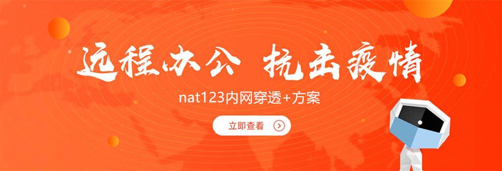 nat123端口映射